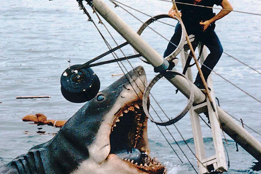 Tiburón El Clásico Que Cambió La Industria Regresa Al Cine La Tercera